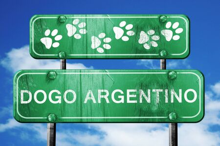 argentino: Dogo argentino, 3D rendering, green road sign on blue sky Stock Photo