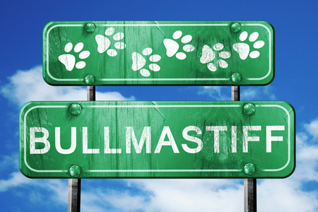 bullmastiff: Bullmastiff, 3D rendering, green road sign on blue sky Stock Photo