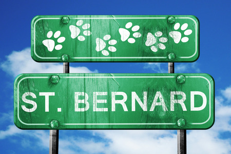 st  bernard: St. bernard, 3D rendering, green road sign on blue sky Stock Photo