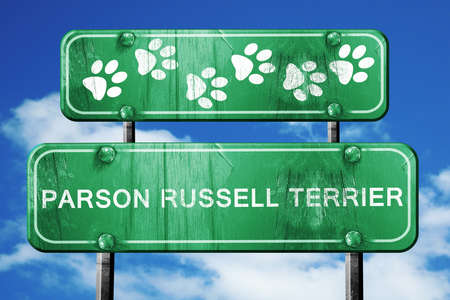 paw russell: Parson russell terrier, 3D rendering, green road sign on blue sky