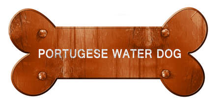 portugese: Portugese water dog, 3D rendering, rough brown dog bone Stock Photo