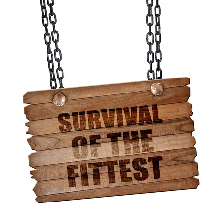 fittest: survival of the fittest, 3D rendering, hanging sign on a chain
