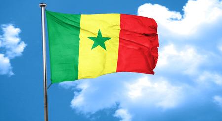 senegal: Senegal flag waving in the wind