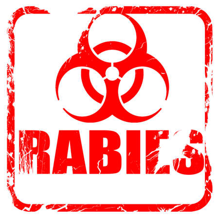 rabies: Rabies virus concept background with some soft smooth lines, red rubber stamp with grunge edges Stock Photo