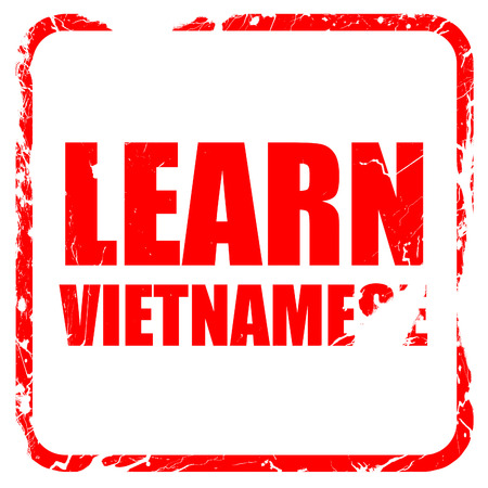 autodidact: learn vietnamese, red rubber stamp with grunge edges