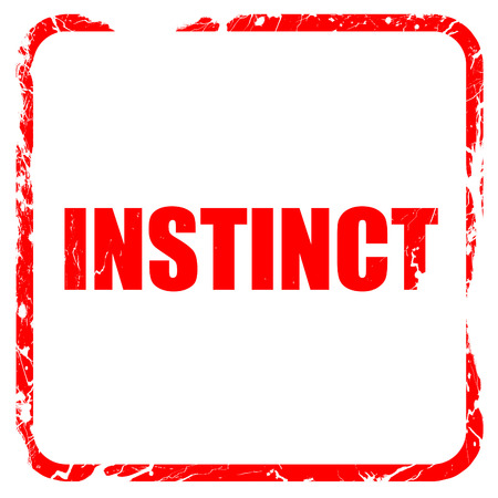 instinct: instinct, red rubber stamp with grunge edges Stock Photo