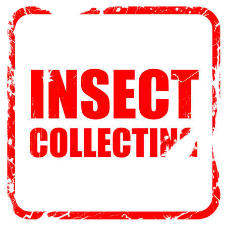 stamp collecting: insect collecting, red rubber stamp with grunge edges Stock Photo