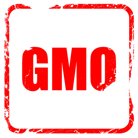 genetically modified crops: gmo, red rubber stamp with grunge edges
