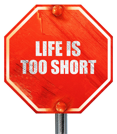 too: life is too short, 3D rendering, a red stop sign Stock Photo