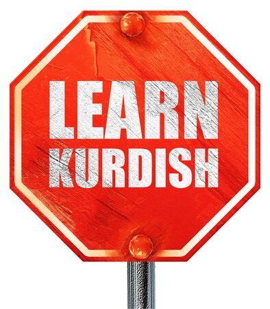 autodidact: learn kurdish, 3D rendering, a red stop sign
