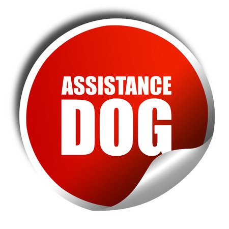 sightless: assistance dog, 3D rendering, a red shiny sticker Stock Photo
