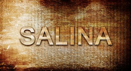 salina: salina, 3D rendering, text on a metal backgroundnil Stock Photo