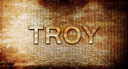 troy: troy, 3D rendering, text on a metal background