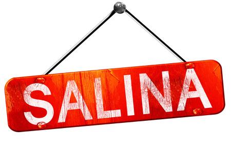 salina: salina, 3D rendering, a red hanging sign