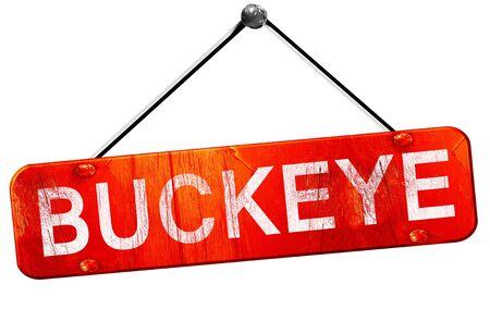 buckeye: buckeye, 3D rendering, a red hanging sign