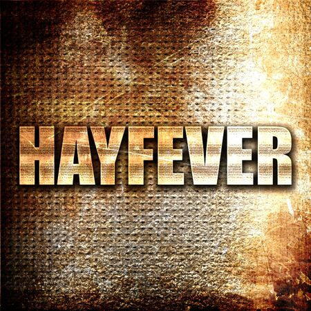 hayfever: hayfever, 3D rendering, metal text on rust background
