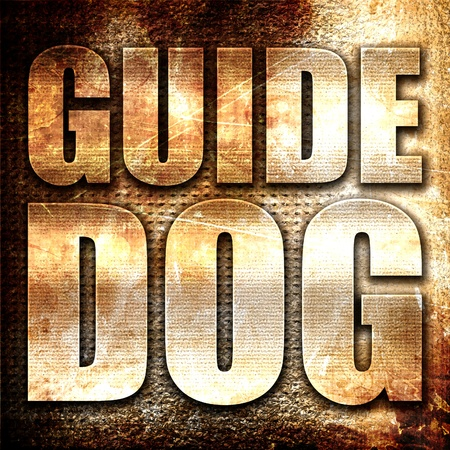 sightless: guide dog, 3D rendering, metal text on rust background