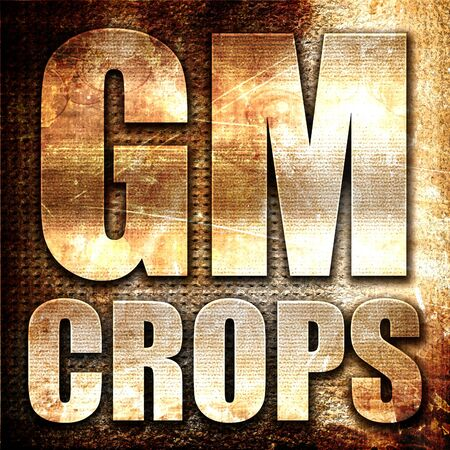 genetically modified crops: gm crops, 3D rendering, metal text on rust background