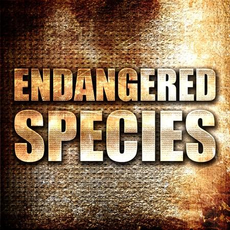 endangered species: endangered species, 3D rendering, metal text on rust background