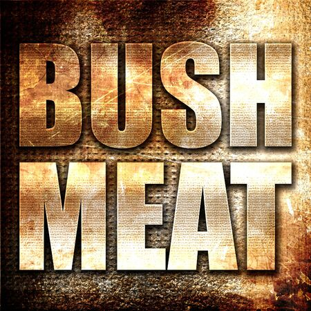 feed the poor: bushmeat, 3D rendering, metal text on rust background