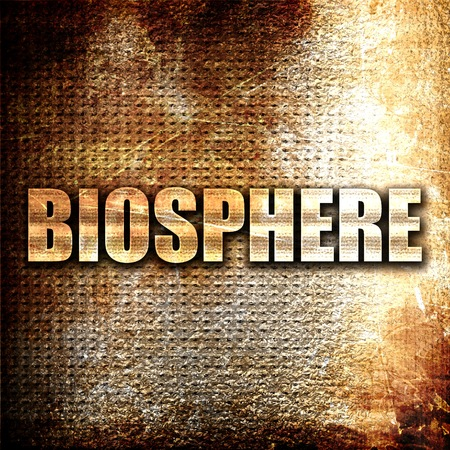 biosphere: biosphere, 3D rendering, metal text on rust background