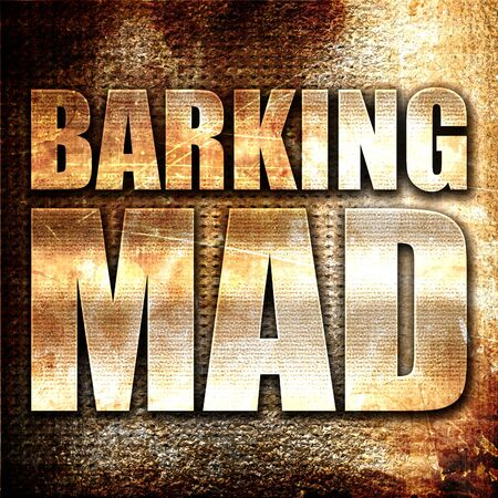 barking: barking mad, 3D rendering, metal text on rust background Stock Photo