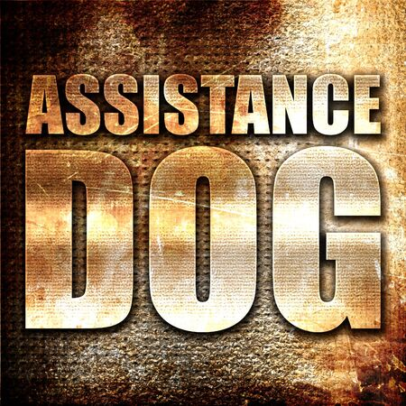 sightless: assistance dog, 3D rendering, metal text on rust background Stock Photo