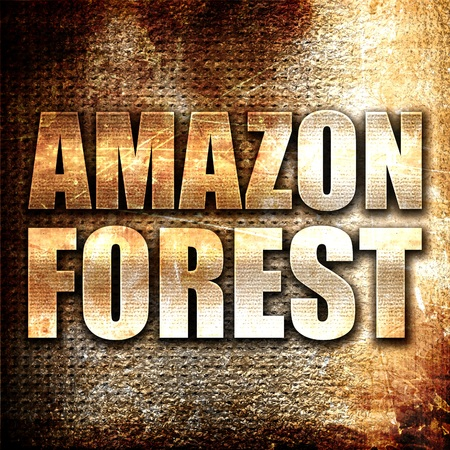 amazon forest: amazon forest, 3D rendering, metal text on rust background