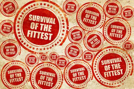 instincts: survival of the fittest, red stamp on a grunge paper texture Stock Photo