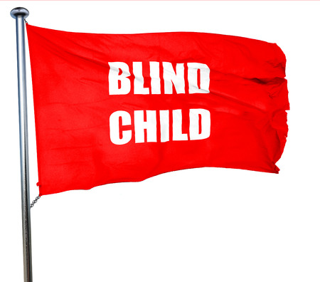 blind child: Blind child area sign with some soft spots and highlights, 3D rendering, a red waving flag