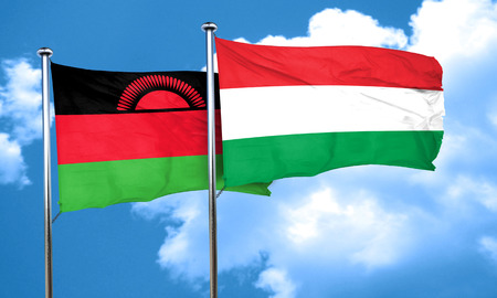 malawi flag: Malawi flag with Hungary flag, 3D rendering Stock Photo