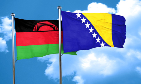 malawi flag: Malawi flag with Bosnia and Herzegovina flag, 3D rendering
