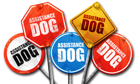 helpmate: assistance dog, 3D rendering, street signs