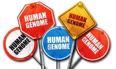 streetsign: human genome, 3D rendering, rough street sign collection