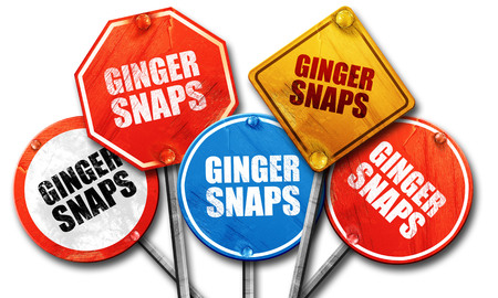 snaps: ginger snaps, 3D rendering, street signs Stock Photo