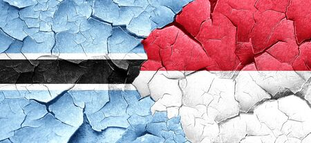 indonesian: Botswana flag with Indonesia flag on a grunge cracked wall