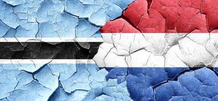 netherlands flag: Botswana flag with Netherlands flag on a grunge cracked wall