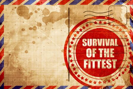 survival: survival of the fittest