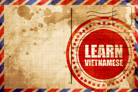 autodidact: learn vietnamese, red grunge stamp on an airmail background