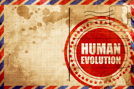 human evolution: human evolution, red grunge stamp on an airmail background Stock Photo