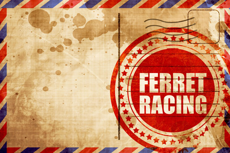 airmail: ferret racing, red grunge stamp on an airmail background