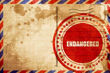endangered: endangered, red grunge stamp on an airmail background