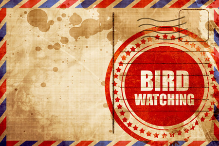 the watcher: bird watching, red grunge stamp on an airmail background Stock Photo