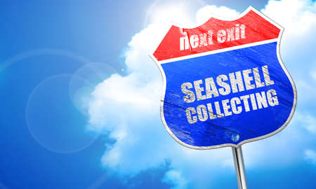 collecting: seashell collecting, 3D rendering, blue street sign