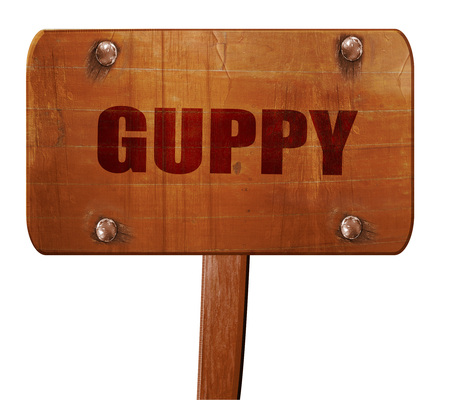poecilia: guppy, 3D rendering, text on wooden sign Stock Photo