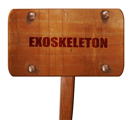 users video: exoskeleton, 3D rendering, text on wooden sign