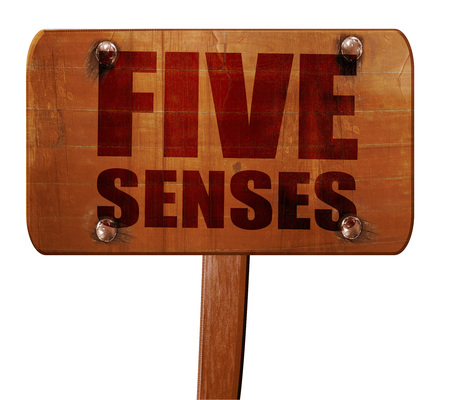 senses: five senses, 3D rendering, text on wooden sign