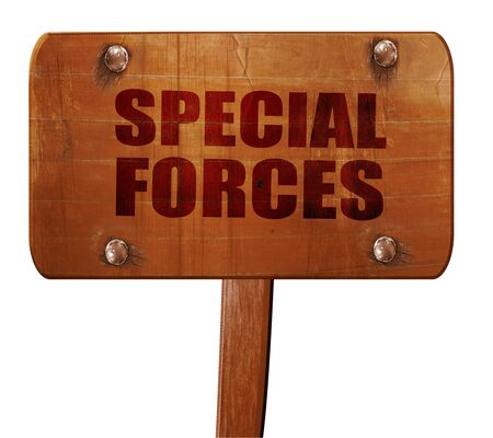 recon: special forces, 3D rendering, text on wooden sign Stock Photo