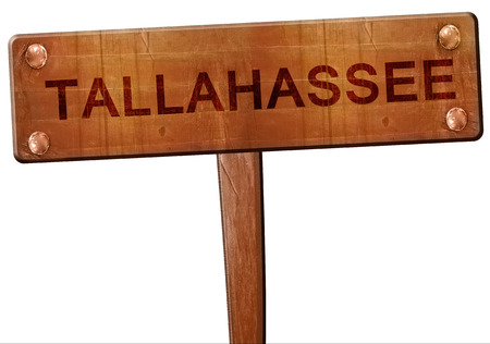 Tallahassee: tallahassee road sign, 3D rendering