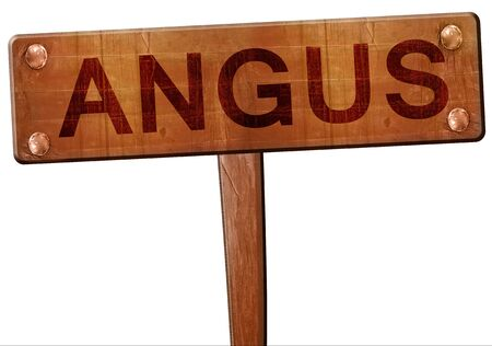 angus: Angus road sign, 3D rendering Stock Photo